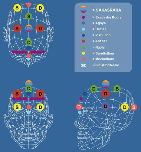 La posizione dell'Hamsa chakra è individuata dal dischetto azzurro