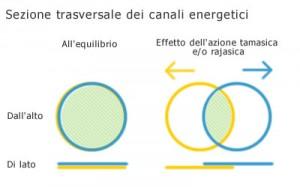 Sezione trasversa dei canali energetici