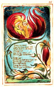 Infant Joy di William Blake (traduzione)