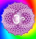 Sahasrara chakra: il chakra dello Yoga